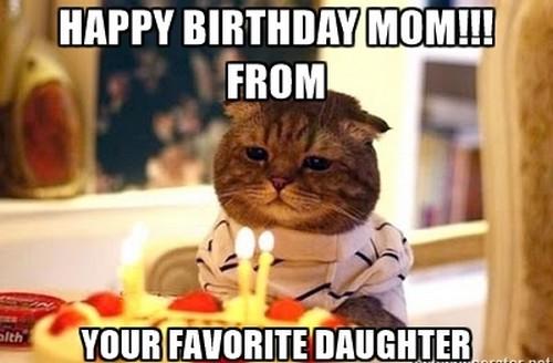 birthday_cat_happy_birthday_mom_meme1