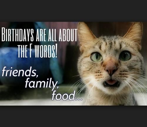 cat_birthday_memes_for_friend1-1