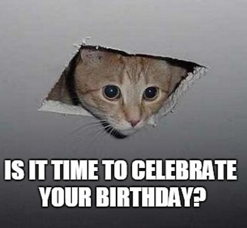 ceiling_cat_birthday_memes_for_friend1-1