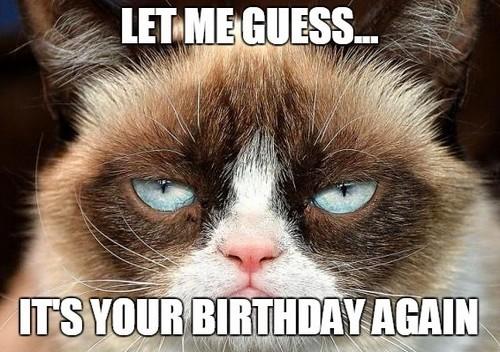 grumpy_cat_birthday_memes_for_friend1-1