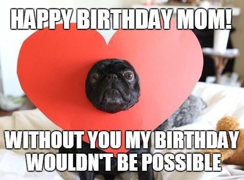 love_pug_happy_birthday_mom_meme1