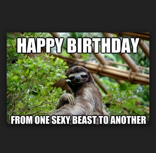 sloth_birthday_memes_for_friend1-1