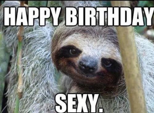 sloth_birthday_memes_for_friend2-1