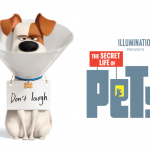 the-secret-life-of-pets-2-movie-poster