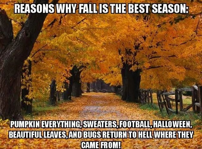funny-first-day-of-fall-meme