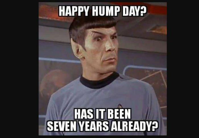 funny-hump-day-meme