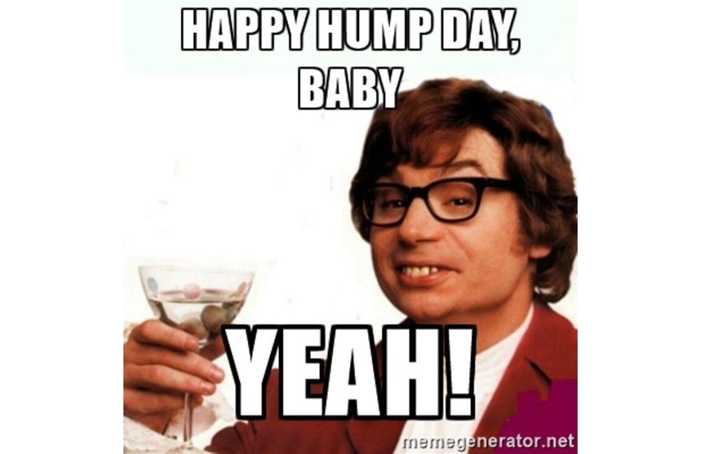 hump-day-funny-meme